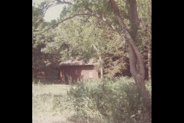 Camp-Cedars-00006