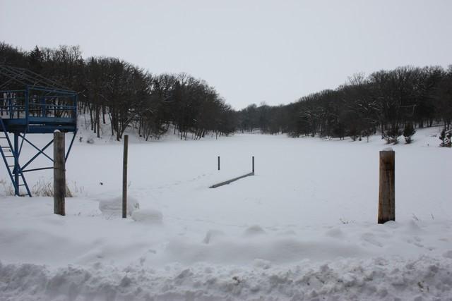Camp-Cedars-00089