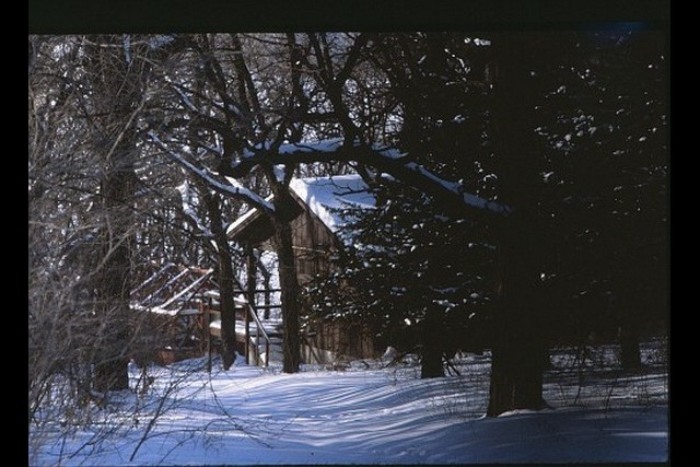 Camp-Cedars-00197