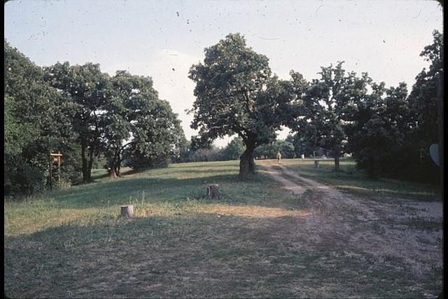 Camp-Cedars-00216