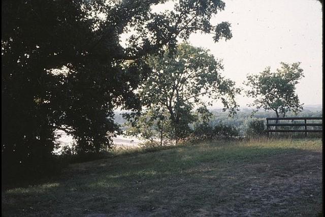 Camp-Cedars-00217