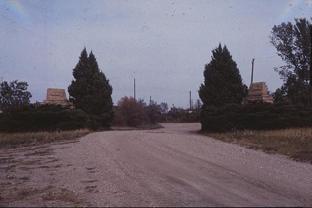 Camp-Cedars-00227