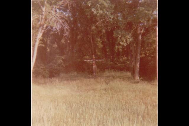 Camp-Cedars-00264